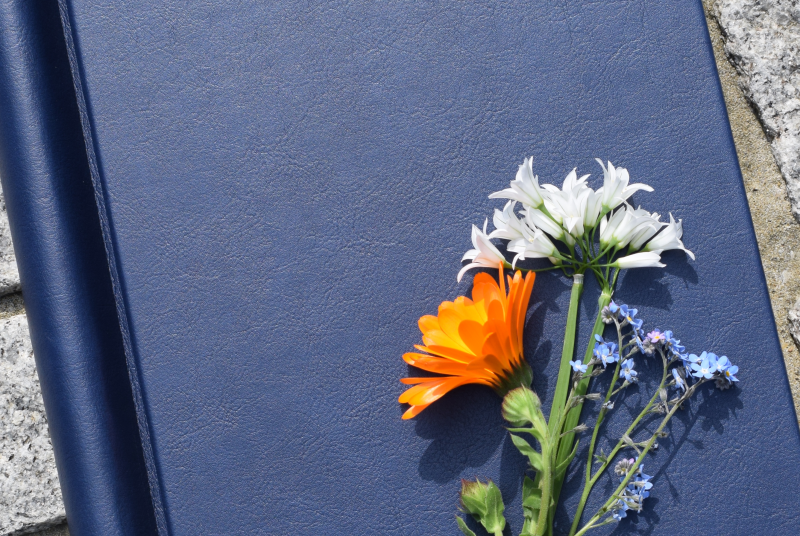 Freedom from Torture Book of Remembrance with flowers